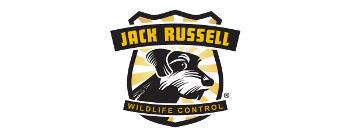 Jack Russell Wildlife Control