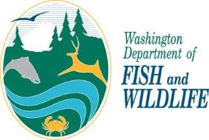 Washington Department of Fish and Wildlife - (WDFW)
