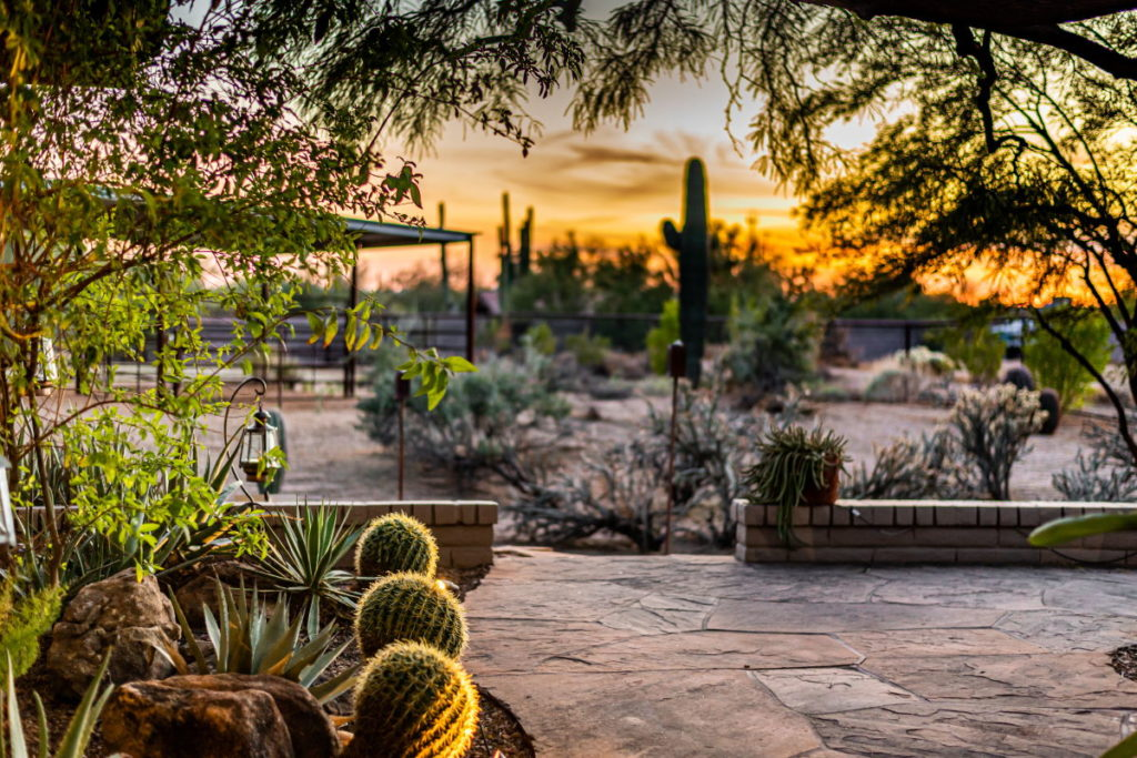 Home Management in Scottsdale, AZ